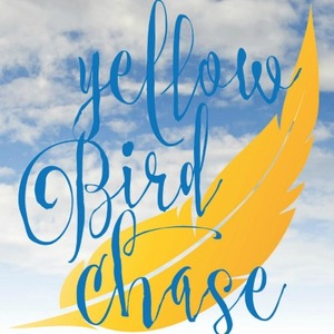 Yellow_bird_sky_400x400