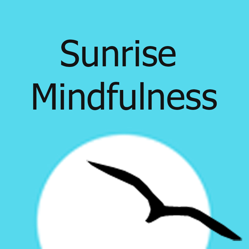 Free Mindfulness Based Stress Reduction Mbsr Orientation