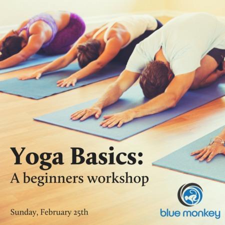 yoga basics a beginners workshop 02/25/18