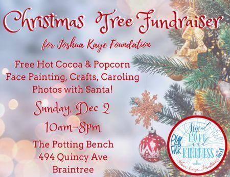 Christmas Fundraiser.Christmas Tree Fundraiser For Joshua Kaye Foundation Sun 12