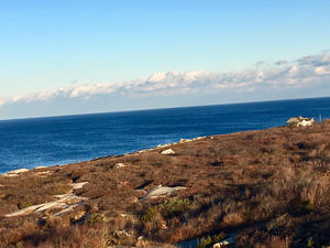 Halibut_point_state_park