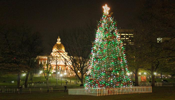 Boston Common Tree Lighting Ceremony