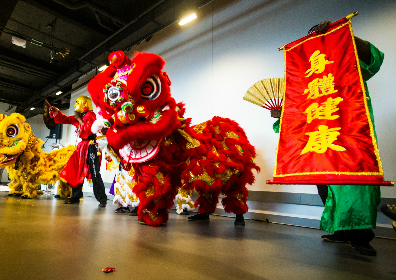 Lunar New Year Celebration 02/17/19