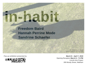Flyer_in-habit