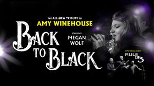 Amy-winehouse-north-shore-music-theatre-concert