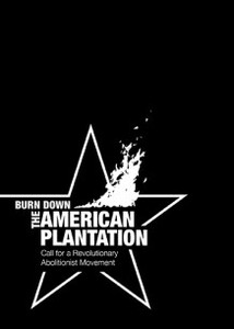 Burn_down_the_american_plantation