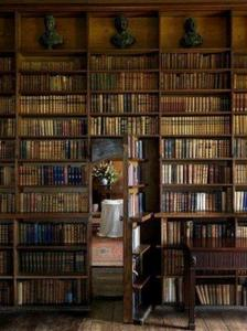 Mystery_bookcase
