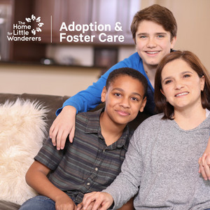 Adoption-ifc-infographic4