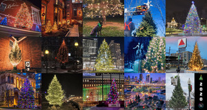 Christmas_trees_in_boston_2020_holiday_lights