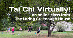 Tai_chi_virtually